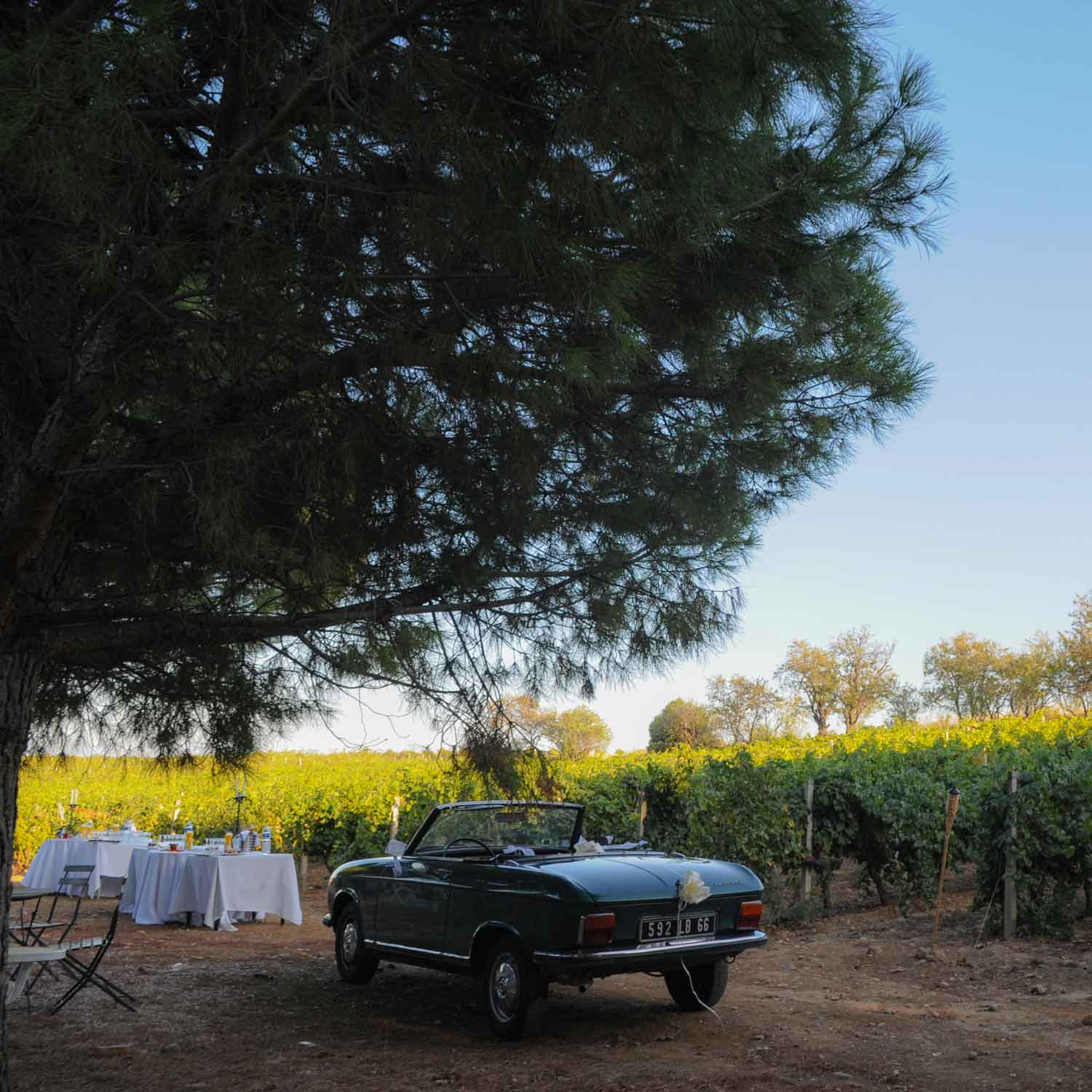 Perpignan wedding photographer vintage peugeot convertible car in Domaine de Rombeau Rivesaltes